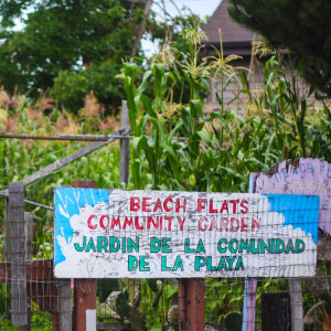 A garden sign at one of the street facing gates.  Beach Flats Community Garden.  Jardin de la Comunidad de la Playa.