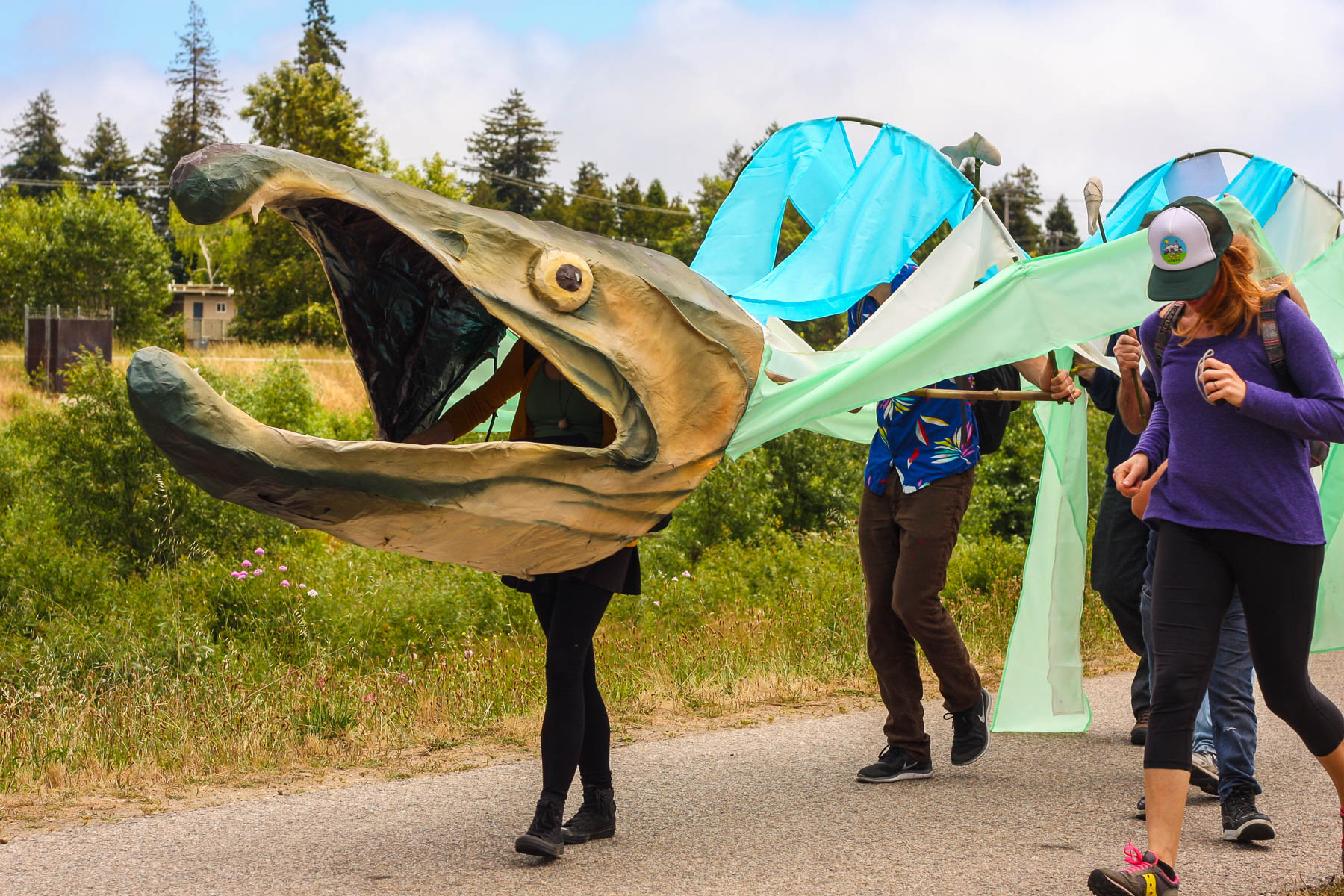 Giant salmon puppet recalls a time when salmonids were abundant in this watershed